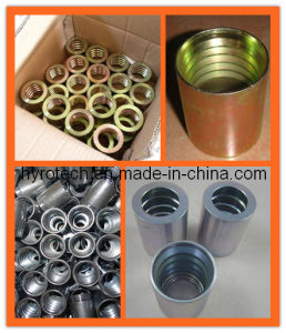 "Stainless Steel Hydraulic Fitting/Hose Fitting (3/16"" to 2"") pictures & photos"
