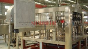 a Variety of Hot Juice Filling Machine (RCGF) pictures & photos