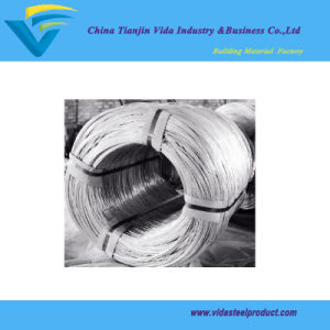 65# High Carbon Galvanized Steel Wire pictures & photos