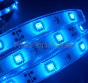 12V Blue LED Strip Light pictures & photos