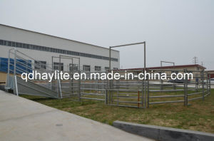 Livestock Cattle Handling Equipment System pictures & photos