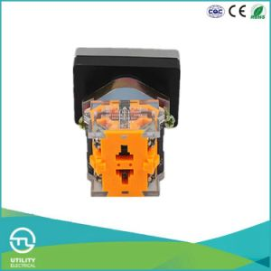 Utl 2 Position Push Button Switch with Light Doub Head pictures & photos