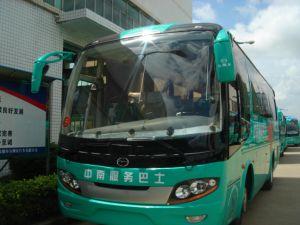 Tourism Bus/Tourist Bus