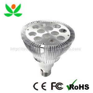 LED PAR (GL-PAR-E27-12W-01)