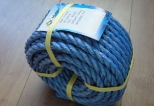 High Quality P. P. Danline Rope pictures & photos