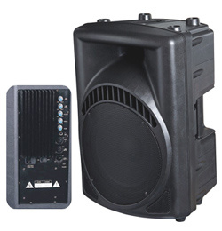 Active&Powered Full Range Speaker Cabinet (PAM-10/12/15A)