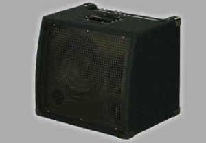Keyboard Amplifiers