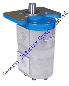 Hydraulic/Steering Oil Pump (QC25+25(13))