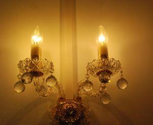 LED Crystal Bulb 3W 4W 5W (BW-D61004)