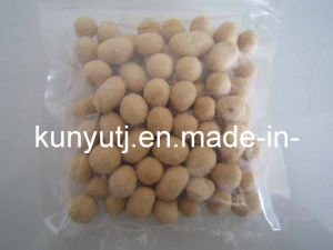 Onion and Spicy Peanuts with High Quality pictures & photos