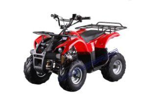 110CC Mini ATV (ATV-110E-1)