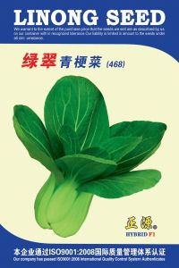 LV Cui Green Stalk Cabbage Seeds (468)