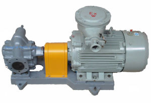 Gear Oil Pump pictures & photos