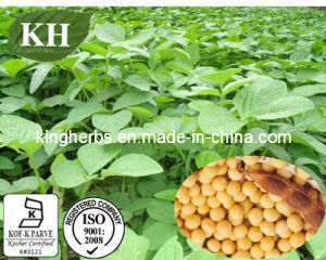 Soybean Extract /Soybean Isoflavones Extract/Herbal Extract pictures & photos