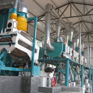 Wheat Flour Stone Mill Machine (6FTS-12S) pictures & photos
