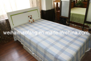 Woven Woolen Pure Virgin Wool Blanket/ (NMQ-WB004) pictures & photos