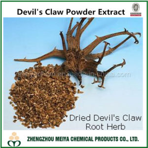 Health Ingredient Devil′s Claw Powder Extract with Harpagoside 1%-5% HPLC pictures & photos