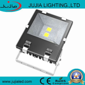 Super Bright CE RoHS Marked 100W LED Floodlight