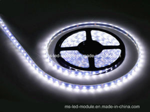 18-20lm DC12V LED Light Strip pictures & photos