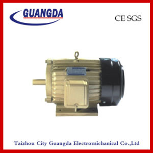 CE SGS 5.5kw Triple-Phase Air Compressor Motor pictures & photos