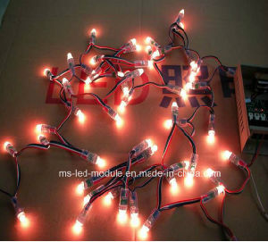 Best Price RGB LED Pixel String Light 10mm with IC 16703 pictures & photos