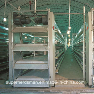 Automatic Poultry Control Shed Equipment for Layer and Broiler pictures & photos