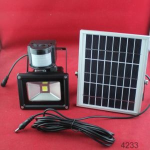 New Products Solar LED Flood Light with Sensor pictures & photos