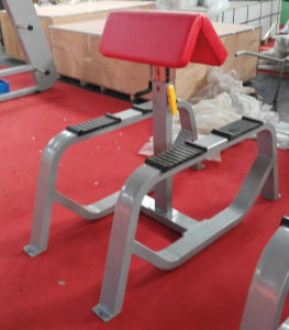 Selectorized Gym Equipment, Back Extension (SD16) pictures & photos