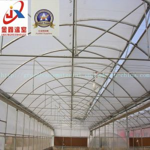 Greenhouse Structure for Many Kinds of Greenhouse pictures & photos