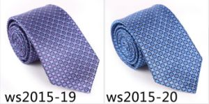New Design Fashionable Check Tie (Ws2015-19) pictures & photos