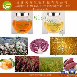 Highly Effective Insecticide Fenobucarb (97%TC 20%EC 50%EC 80%EC) pictures & photos