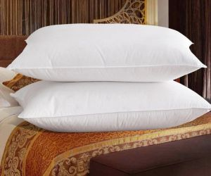 White Cotton Down and Feather Pair Pillows for Bedding pictures & photos