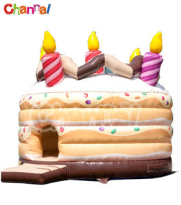 Cake Inflatable Bouncer/Kids Inflatable Jumping Castle Bb091 pictures & photos