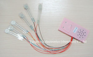 Membrane Switch Sound Module for Child Book pictures & photos