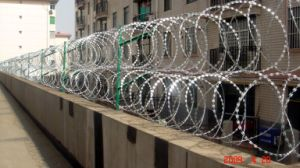 Galcanzed Razor Barbed Wire pictures & photos