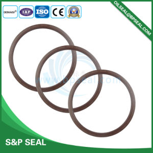 Tc Type Mechanical Oil Seal with Double Lips for Industry pictures & photos