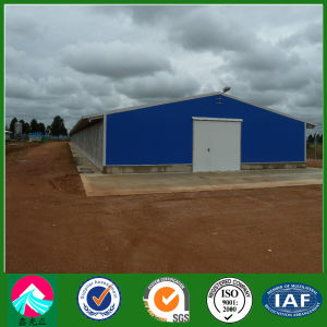 Metal Poultry House/Poultry Shed (XGZ-pH 033) pictures & photos