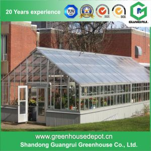 China Manufacturer Clear Glass Garden Greenhouse for Sale pictures & photos