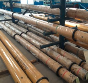 Hot Sale! API Downhole Motor for Oilfield pictures & photos