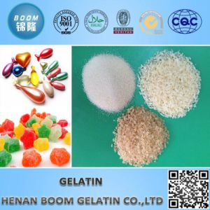 Well Quality Gelatin for Technical Industry pictures & photos