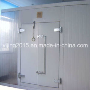 Fruit Vegetable Meat Fish Chicken Cold Room