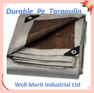 Durable Bothside Laminated PE Tarpaulin pictures & photos