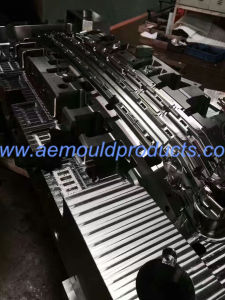 High Precision Plastic Injection Mould pictures & photos