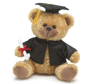 Custom Soft Toy Plush Bear Graduation pictures & photos