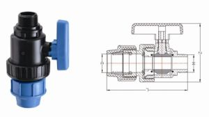 PP Pipe Fitting Series PP Male True Union Ball Valve (V24) pictures & photos