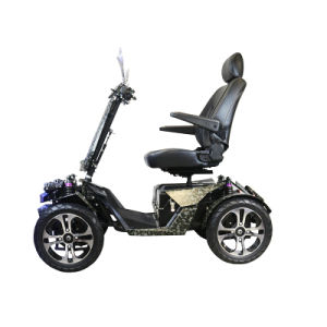 Automaic off Road Scooter with 4 Powerful 350W Motor pictures & photos