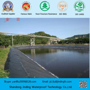 ASTM Standard HDPE Geomembrane in Premier Grade pictures & photos