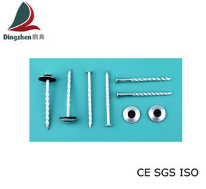Metal Roofing Nails with High Quality (Combination)