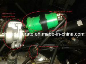 Motorcycle Catalytics and Evap Accessories pictures & photos