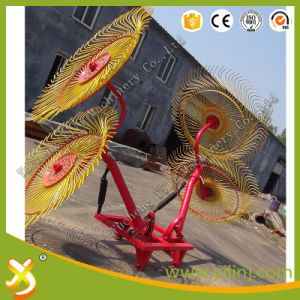 9GLTS Series Finger Wheel Hay Rake pictures & photos